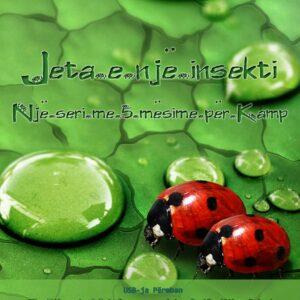Jeta e një insekti